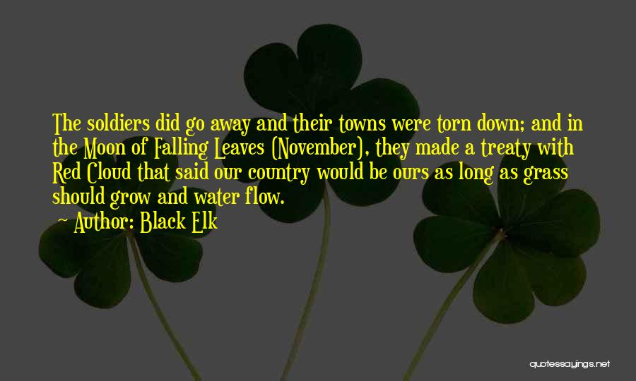 Go With The Flow Quotes By Black Elk