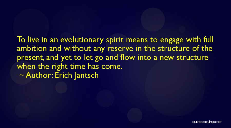 Go With The Flow Quotes By Erich Jantsch