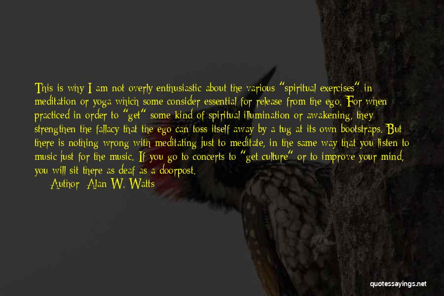 Go Your Own Way Quotes By Alan W. Watts