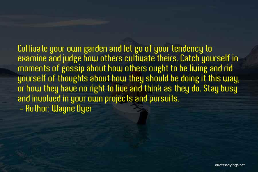 Go Your Own Way Quotes By Wayne Dyer
