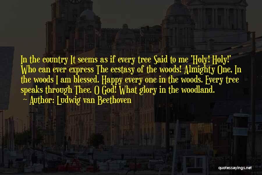 God Blessed Me Quotes By Ludwig Van Beethoven