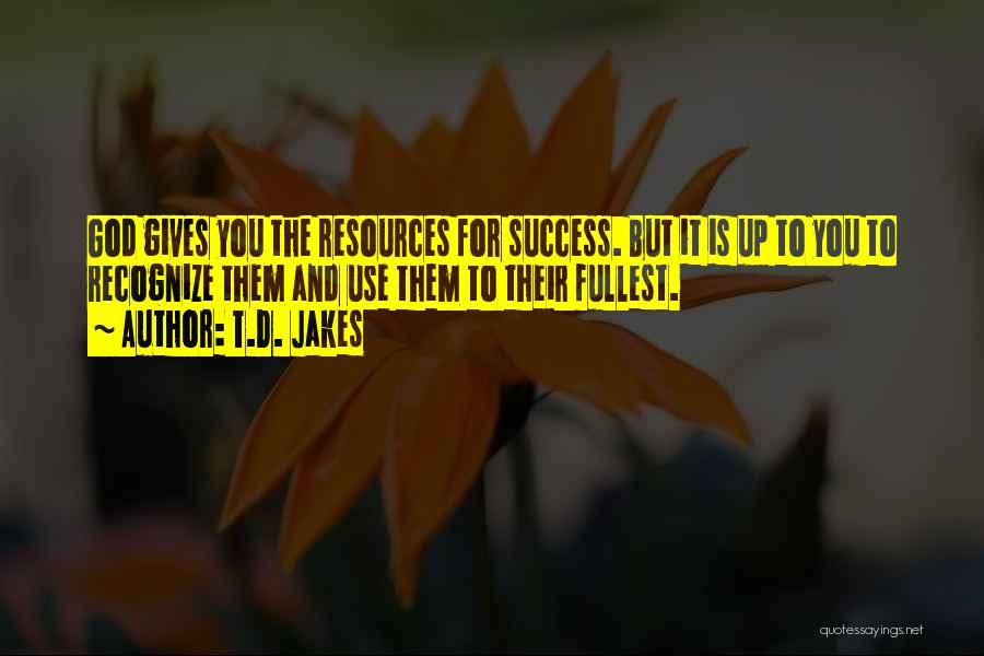 God Giving Success Quotes By T.D. Jakes