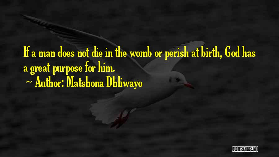 God Has A Purpose Quotes By Matshona Dhliwayo