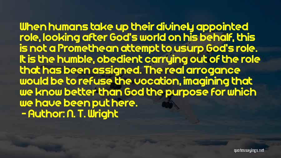 God Has A Purpose Quotes By N. T. Wright