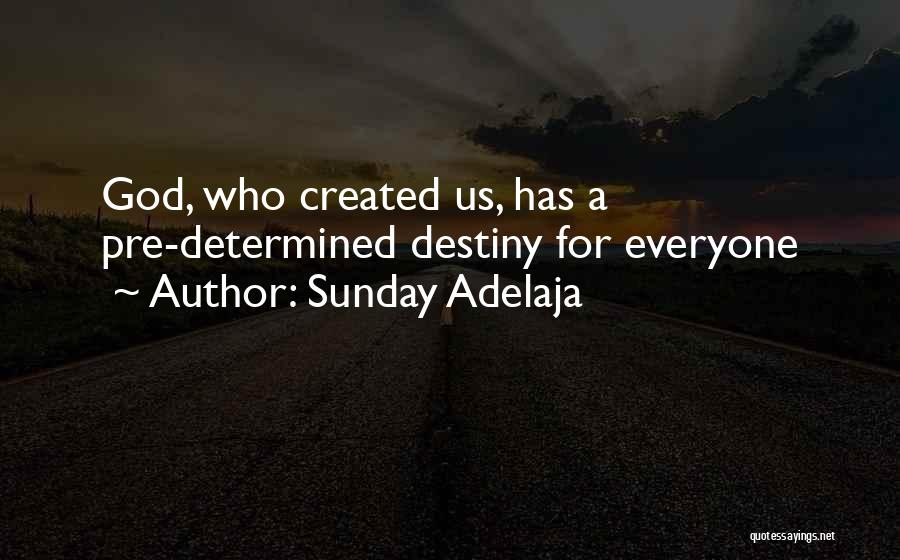 God Has A Purpose Quotes By Sunday Adelaja