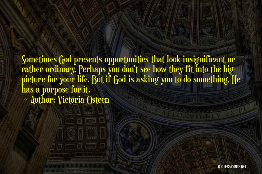 God Has A Purpose Quotes By Victoria Osteen