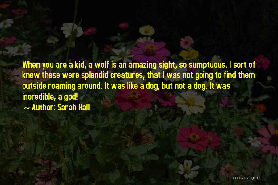 God Is An Amazing God Quotes By Sarah Hall