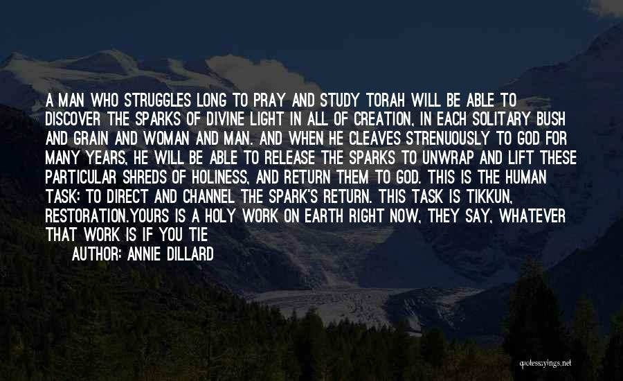 God Is The Light Of The World Quotes By Annie Dillard
