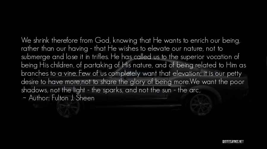 God Is The Light Of The World Quotes By Fulton J. Sheen