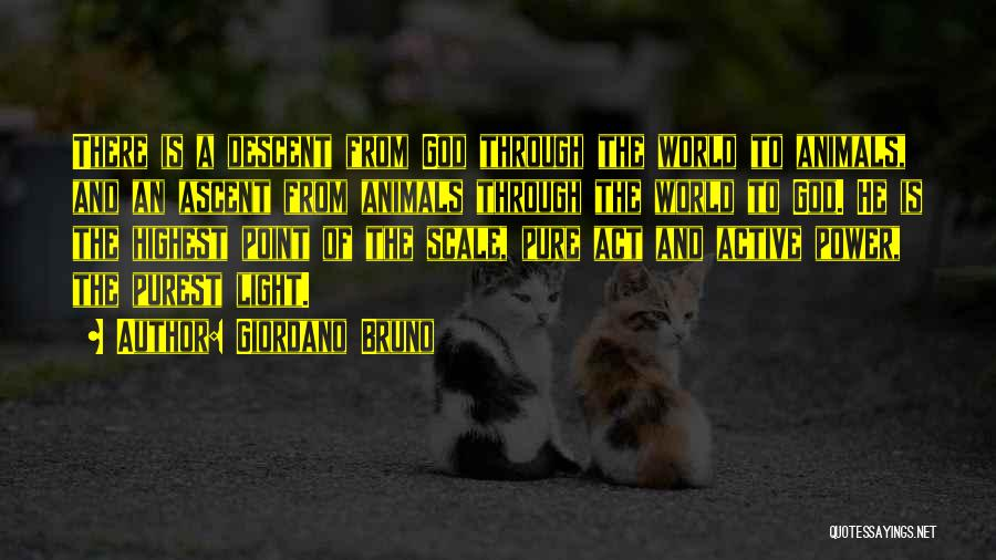 God Is The Light Of The World Quotes By Giordano Bruno