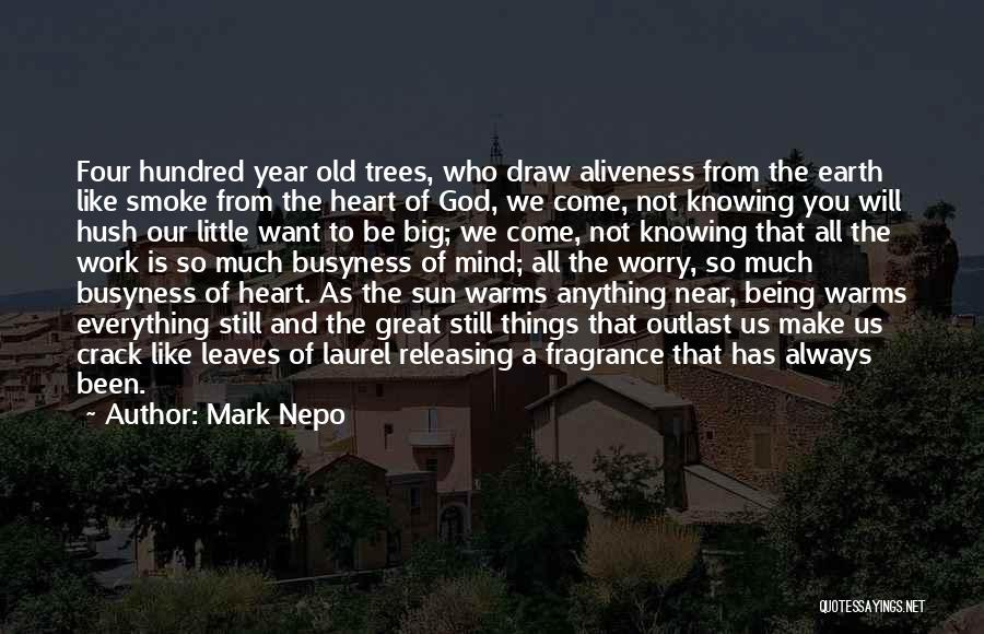 God Knowing Your Heart Quotes By Mark Nepo
