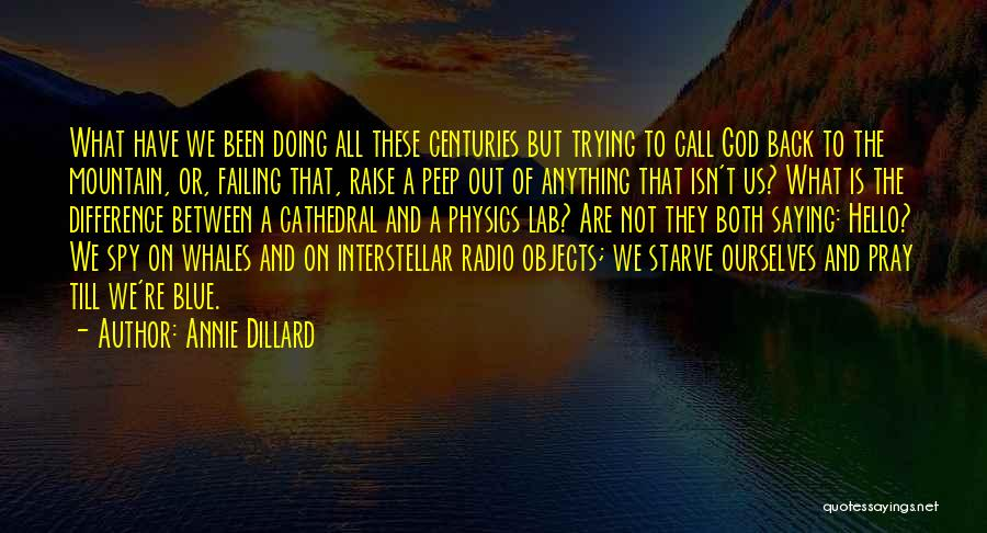 God Not Listening Quotes By Annie Dillard