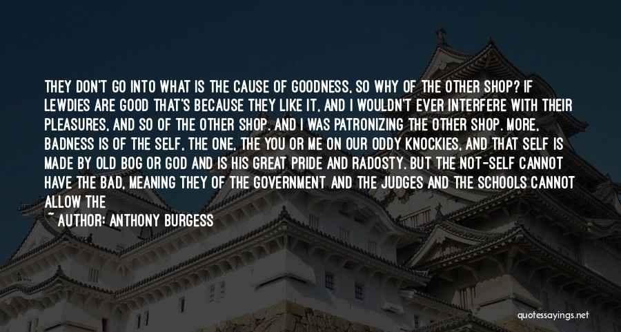 God's Goodness Quotes By Anthony Burgess