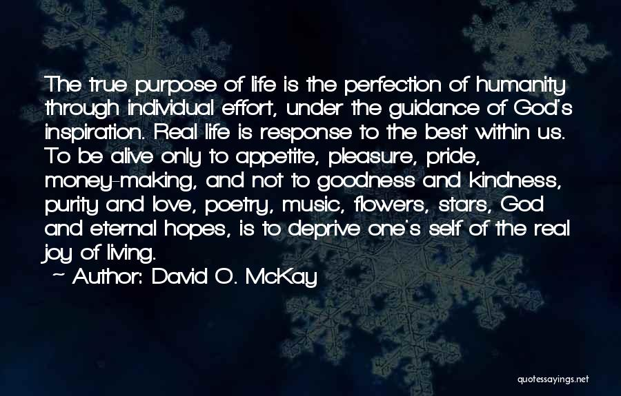 God's Goodness Quotes By David O. McKay