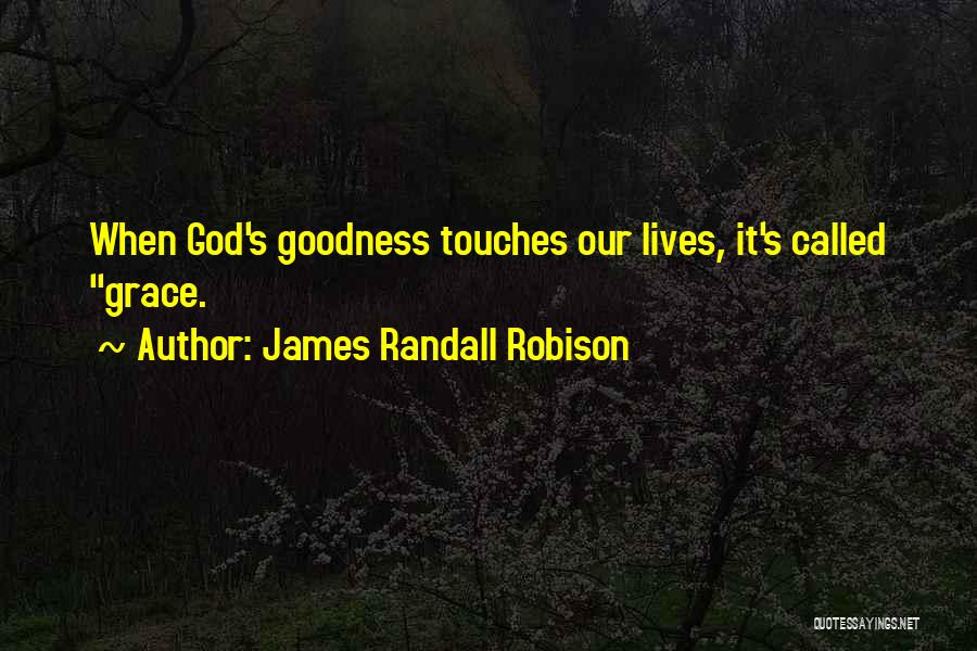 God's Goodness Quotes By James Randall Robison