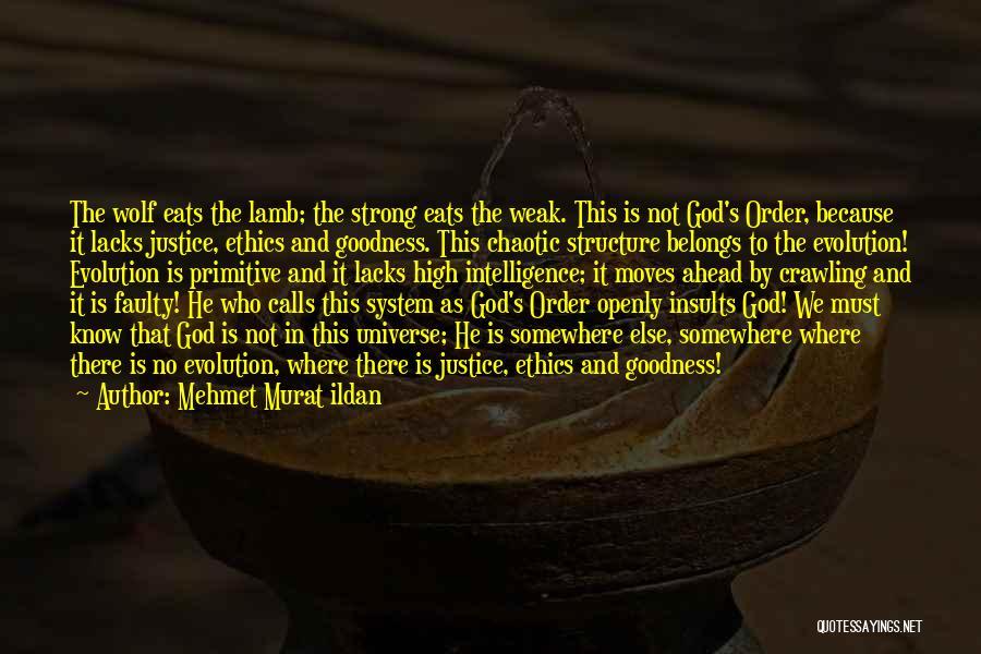 God's Goodness Quotes By Mehmet Murat Ildan