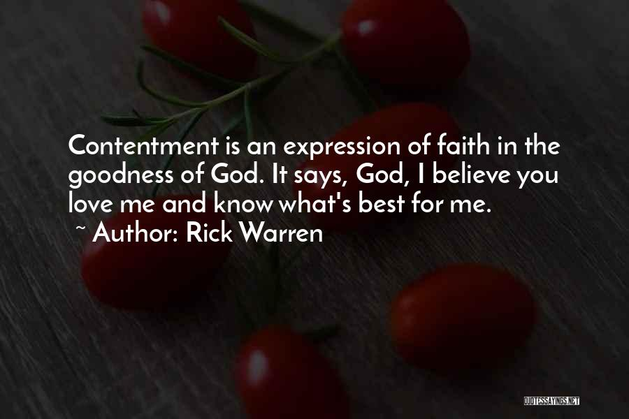 God's Goodness Quotes By Rick Warren