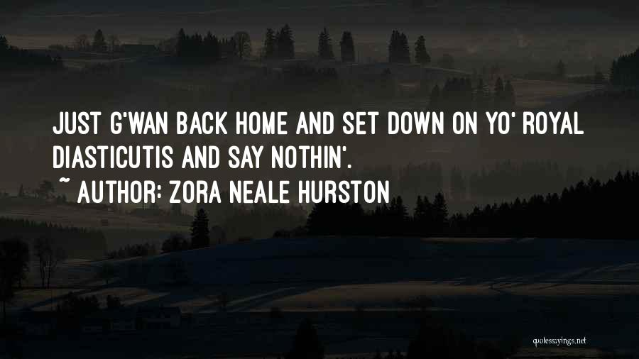 Going Back Home Soon Quotes By Zora Neale Hurston