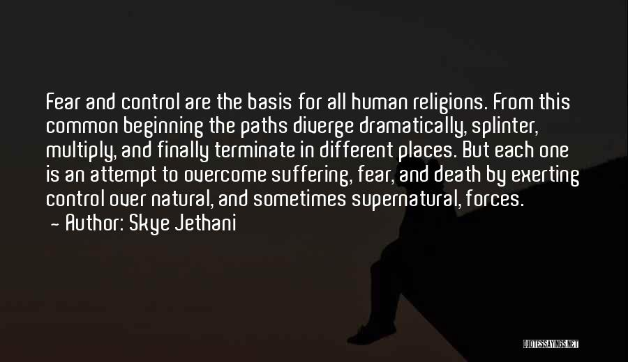 Going Different Paths Quotes By Skye Jethani