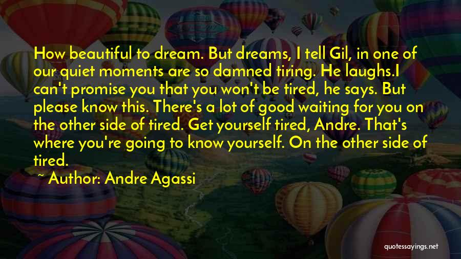 Going For Dreams Quotes By Andre Agassi