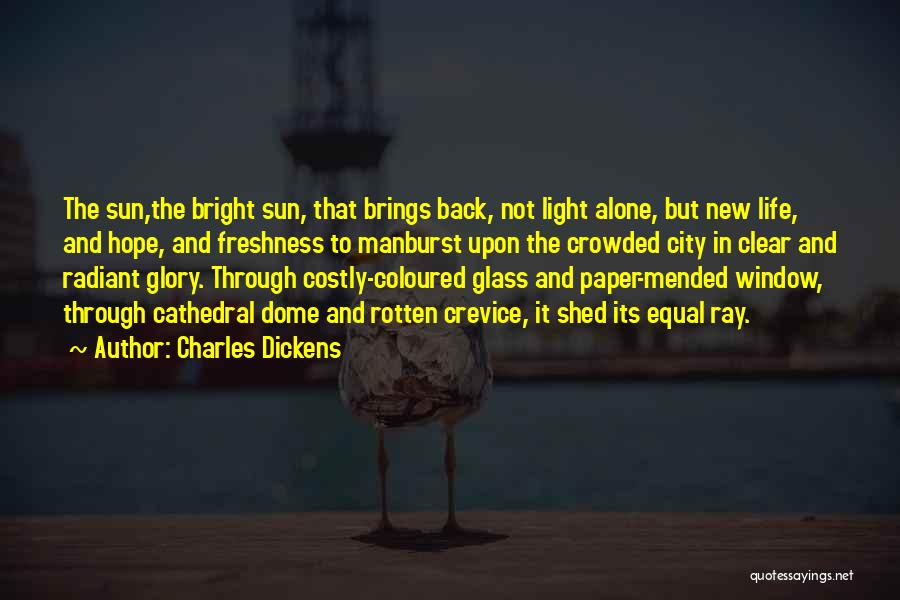 Going Through Life Alone Quotes By Charles Dickens