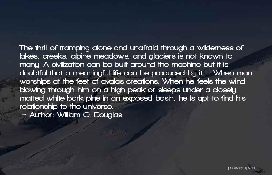 Going Through Life Alone Quotes By William O. Douglas