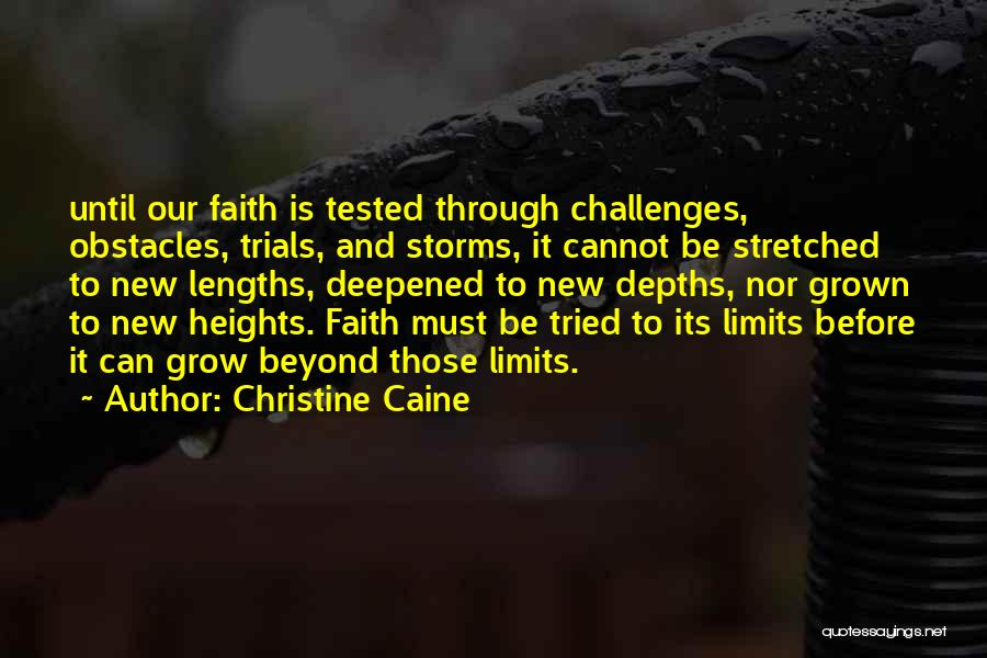 Going Through Storms Quotes By Christine Caine