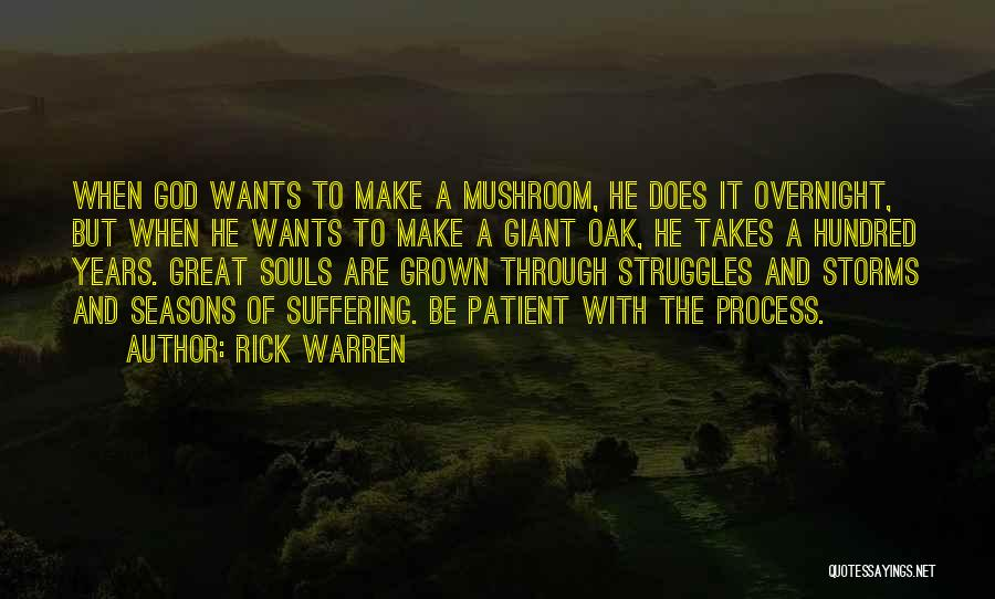Going Through Storms Quotes By Rick Warren