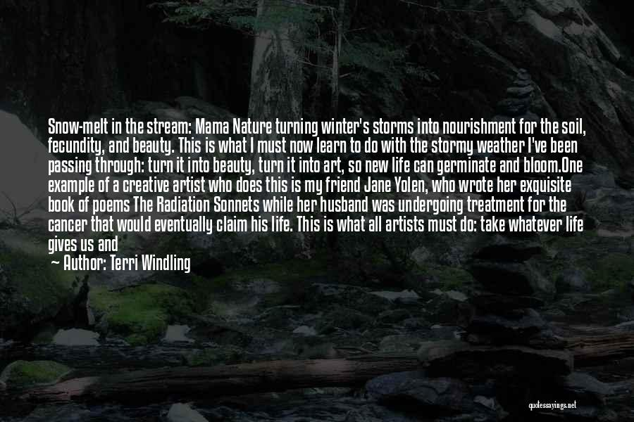 Going Through Storms Quotes By Terri Windling