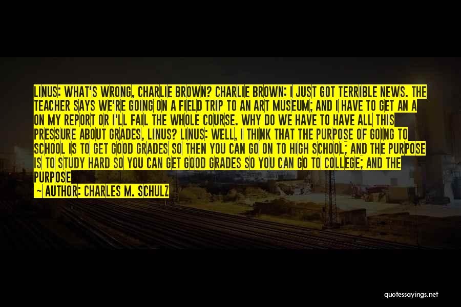 Going To Graduate School Quotes By Charles M. Schulz