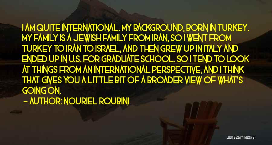 Going To Graduate School Quotes By Nouriel Roubini