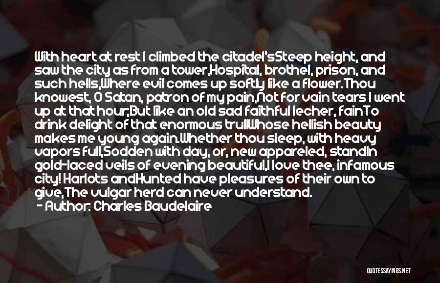 Going To Sleep Sad Quotes By Charles Baudelaire