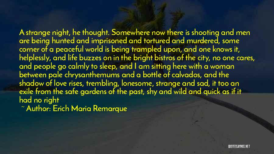 Going To Sleep Sad Quotes By Erich Maria Remarque