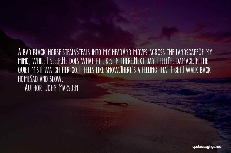 Going To Sleep Sad Quotes By John Marsden