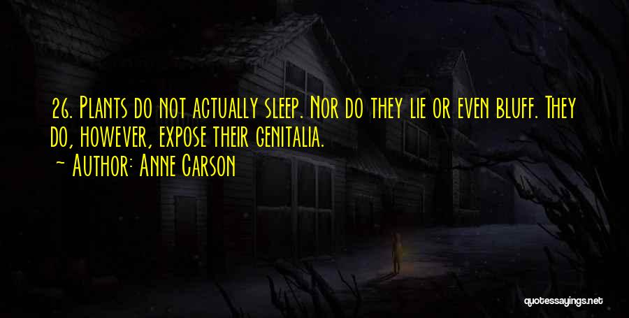 Going To Sleep Without You Quotes By Anne Carson