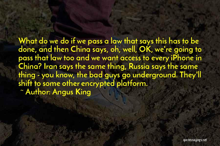 Going Underground Quotes By Angus King