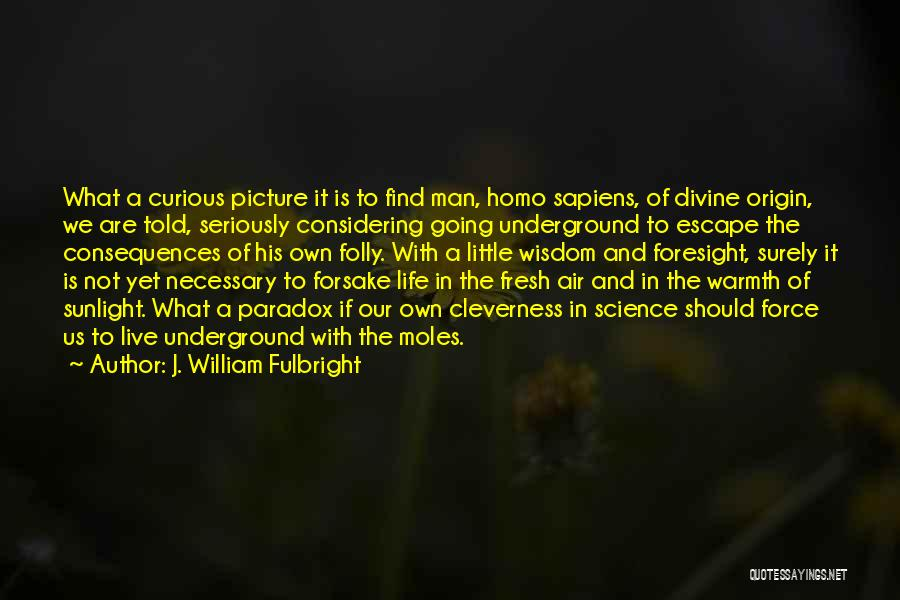 Going Underground Quotes By J. William Fulbright