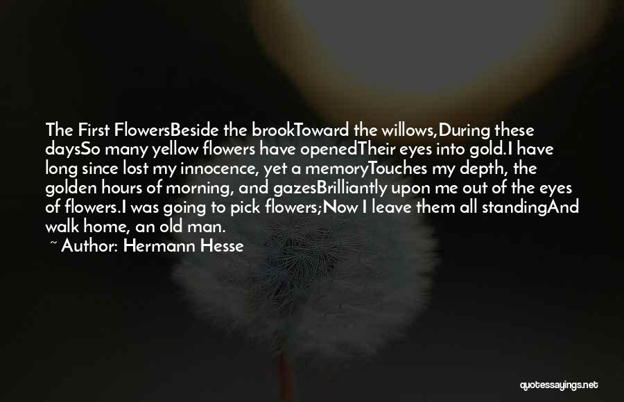 Gold Eyes Quotes By Hermann Hesse