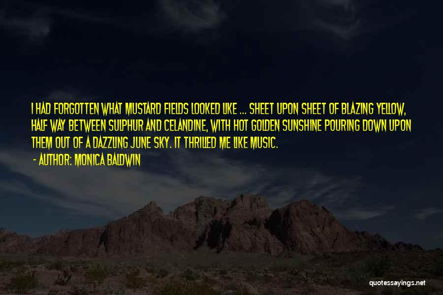 Golden Fields Quotes By Monica Baldwin