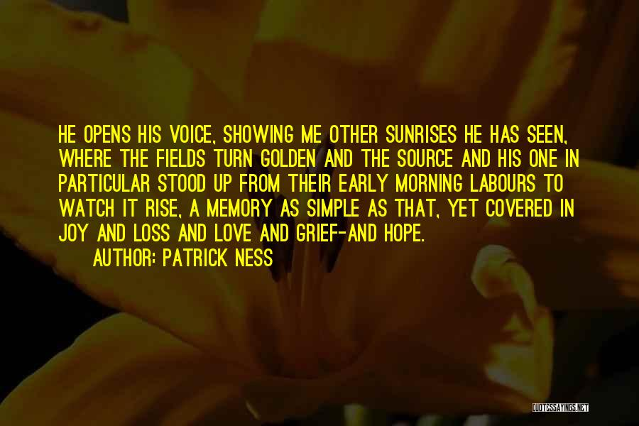 Golden Fields Quotes By Patrick Ness