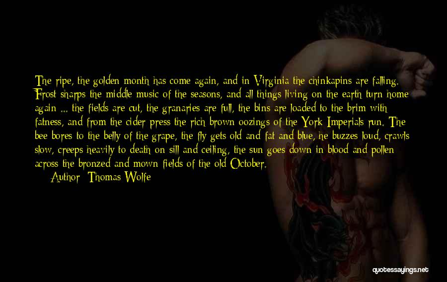 Golden Fields Quotes By Thomas Wolfe