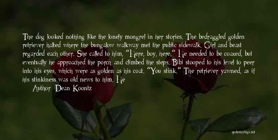 Golden Retriever Dog Quotes By Dean Koontz
