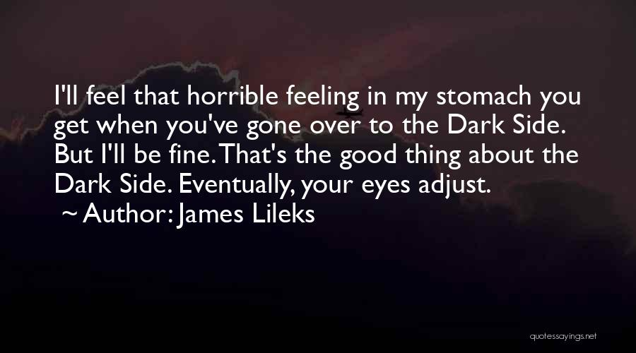 Gone Feelings Quotes By James Lileks
