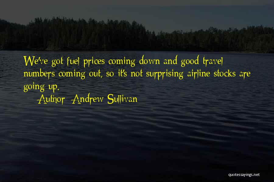 Good Airline Quotes By Andrew Sullivan