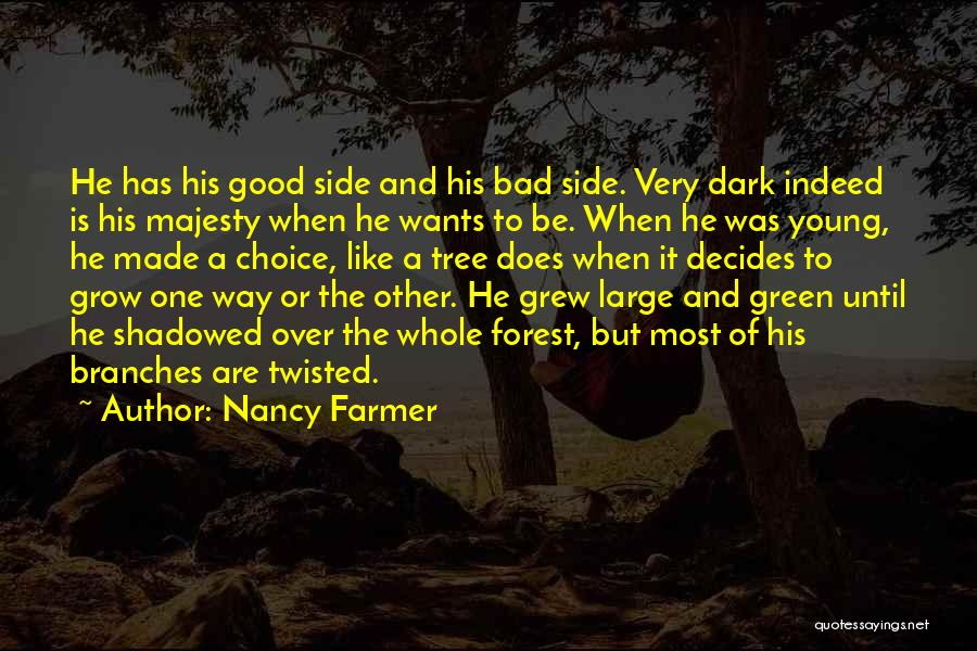 Good And Bad Choice Quotes By Nancy Farmer
