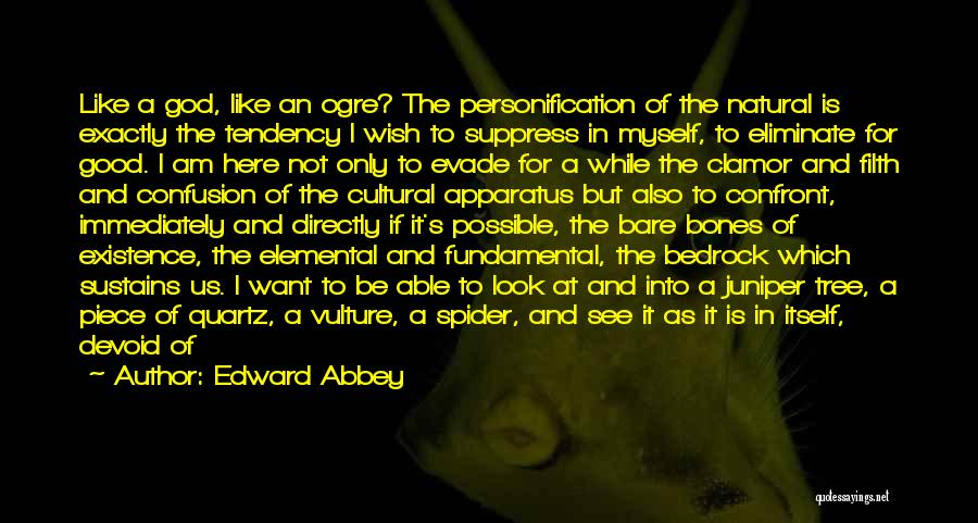 Good Anti-christian Quotes By Edward Abbey