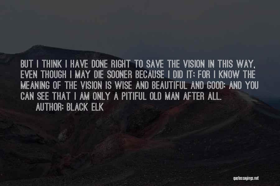 Good Black Man Quotes By Black Elk