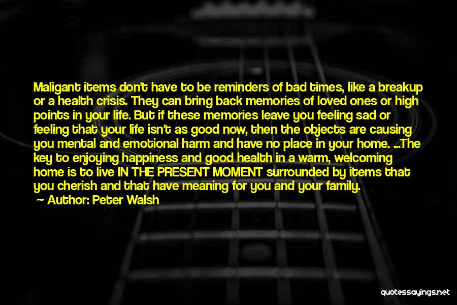 Good Family Memories Quotes By Peter Walsh