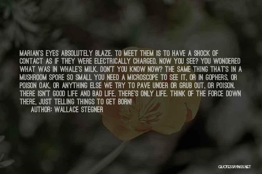 Good Grub Quotes By Wallace Stegner