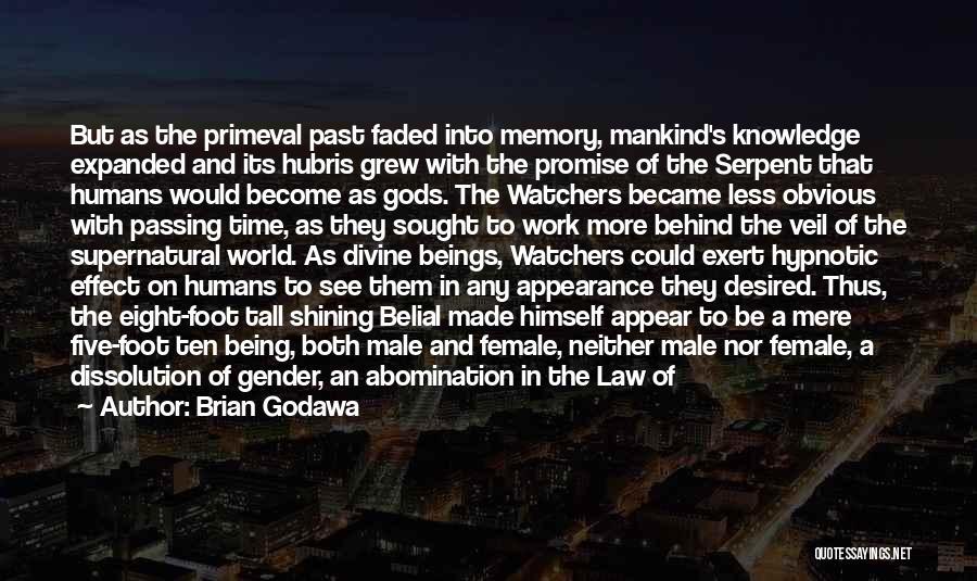 Good Humans Quotes By Brian Godawa